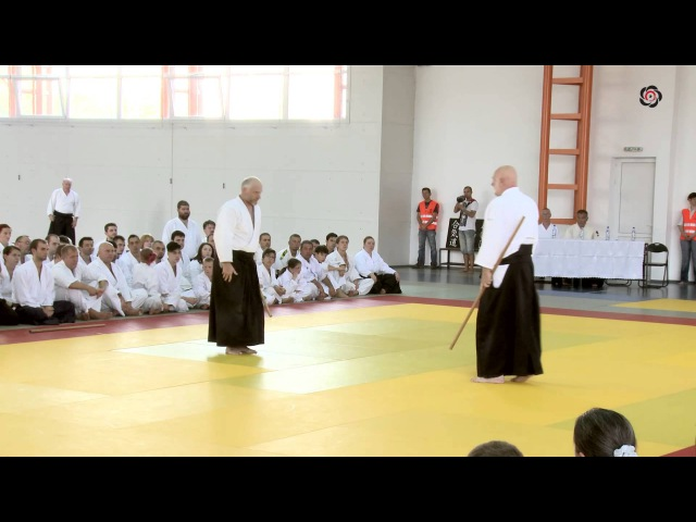 Ulf Evenas Shihan Demonstration in Romania 2014