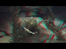 Undersea life 3D anaglif full hd 1080p