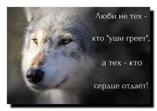 adXJKT2leSQ.jpg