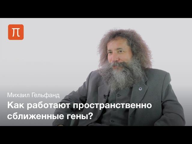 Структурная биоинформатика — Михаил Гельфанд cnhernehyfz ,bjbyajhvfnbrf — vb[fbk utkmafyl