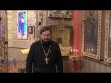 Протоиерей Александр Дягилев поддержал сбор подписей за запрет абортов