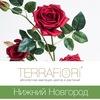 TerraFiori Нижний Новгород