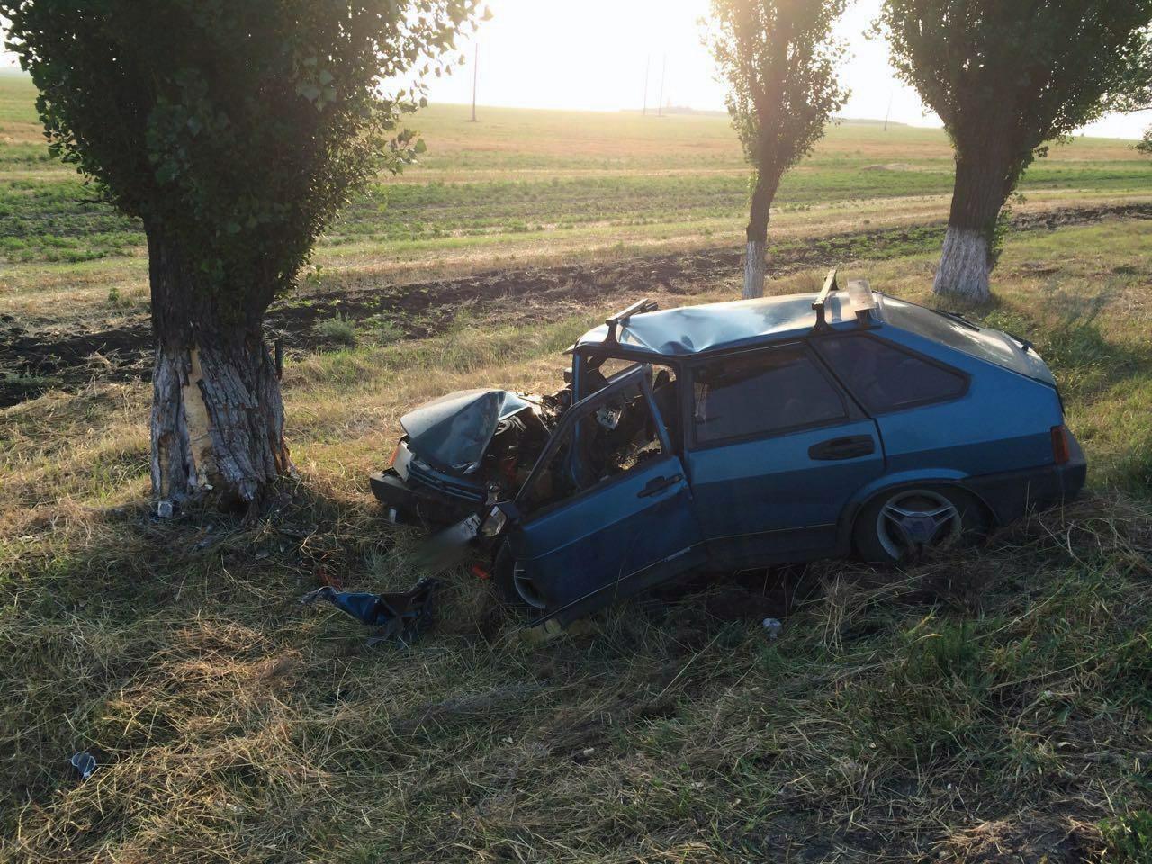 На трассе «Ростов-Таганрог» «девятка» вылетела в кювет и врезалась в многолетний тополь