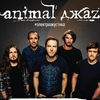 Animal ДжаZ | Тула | М2 | 22.04