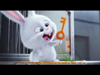 Тайная жизнь домашних животных (2016) Третий официальный русский трейлер мультфильма (HD)
