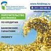 Поддержка бизнеса| Новосибирск