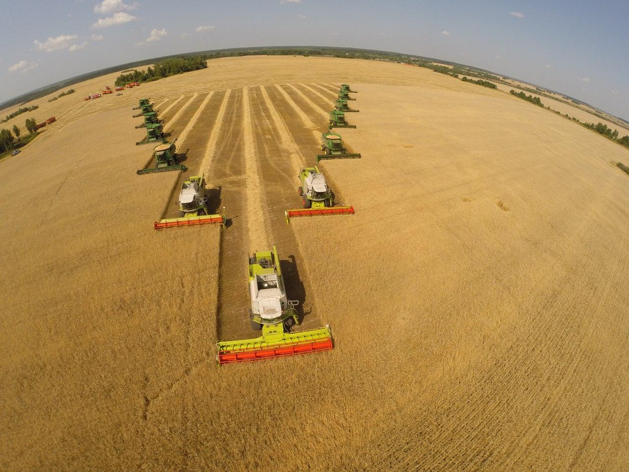 «Мираторг» инвестирует около 200 млн рублей на реализацию зернового проекта под Черняховском