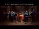 Bach Brandenburg Concerto No 4 Andante BWV 1049 Voices of Music original instruments