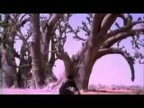 Ismael Lo - Tajabone (Subtitulado) - YouTube.flv