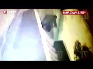 Петербуржец впал в кому, поскользнувшись на ступенях в Сертолово