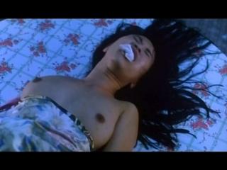 Нерассказанная История / The Untold Story / Bat Sin Fan Dim: Yan Yuk Cha Siu Bau (1993)