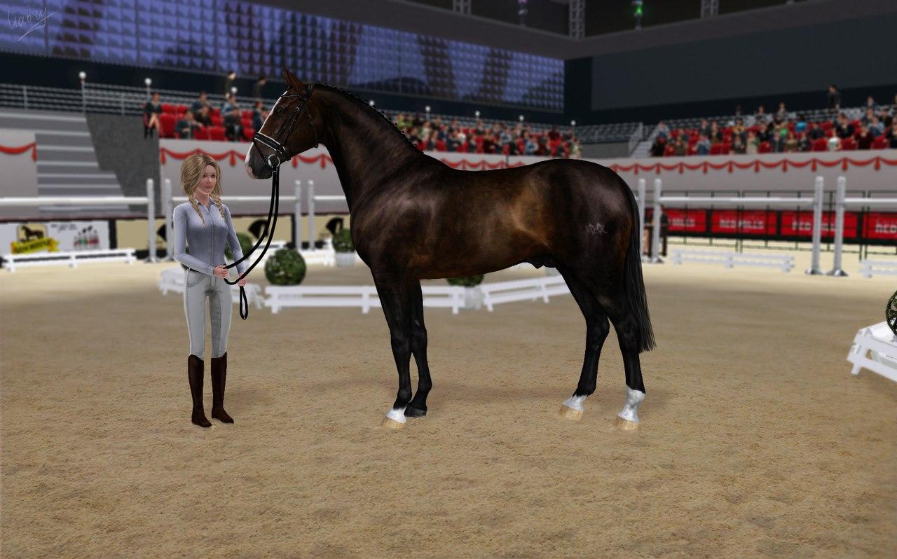 Регистрация лошадей в RHF 2 - Страница 37 Nnj2xAdth5U
