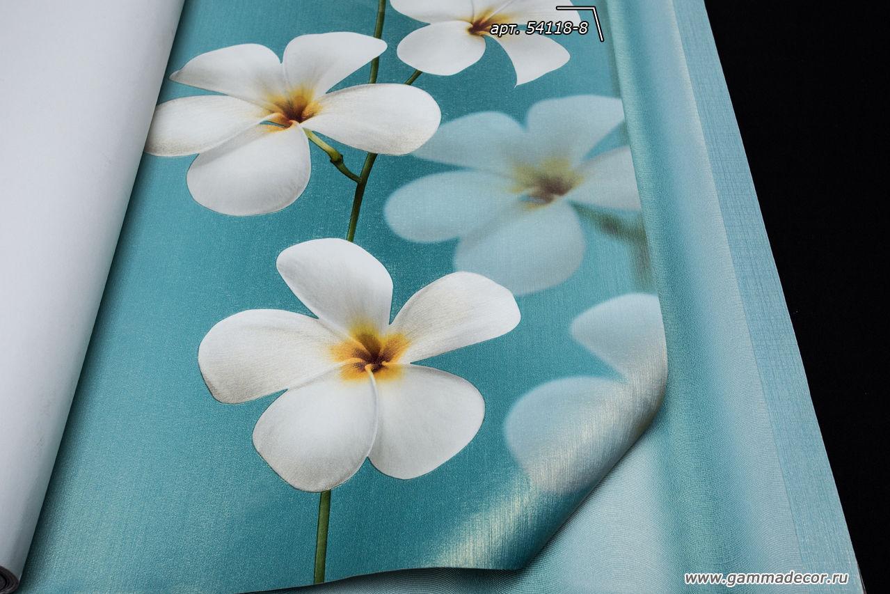 Интересные дизайны обоев в бирюзовом цвете.