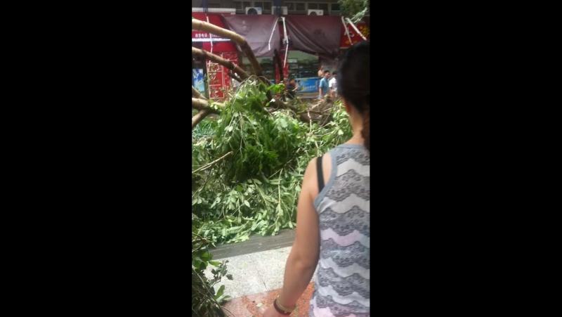 Тайфун Меранти.Утро 15.09.2016