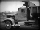 Яблоки Чернобыля 1986