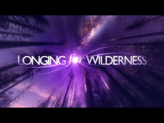 Longing for Wilderness | 360° Experience 4K 50FPS