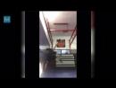 Tony Ferguson Training for Khabib Nurmagomedov Muscle Madness