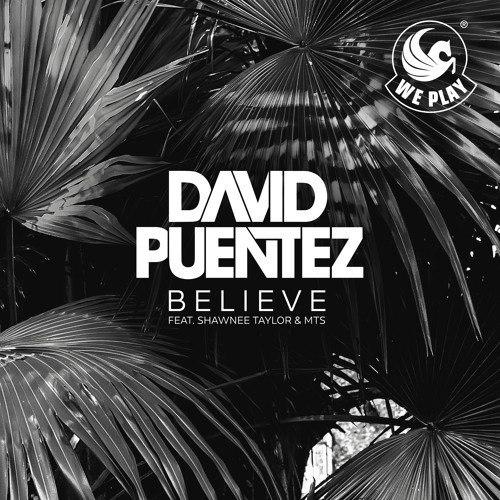 David Puentez, Shawnee Taylor, MTS - Believe (Original Mix)