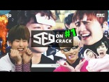 SF9 ON CRACK FAKE SUBS #1