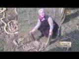 ШОК Пенсионерка убила 80 змей лопатой в Дагестане