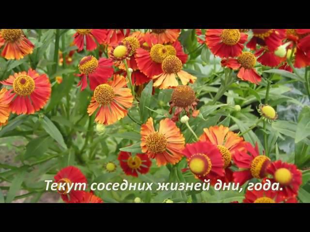001 Александр Туралин