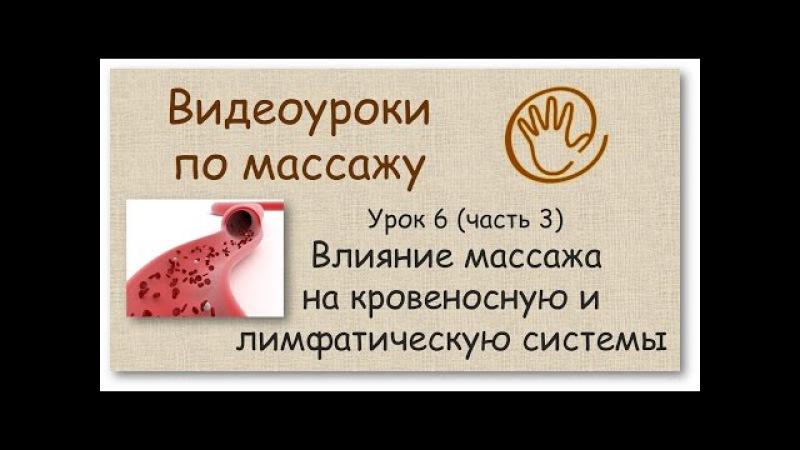 Влияние массажа на кровеносную и лимфатическую систему | Урок 6, часть 3 | Уроки ма...