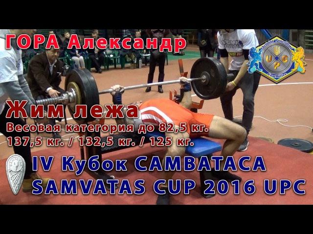 Гора Александр. Жим лежа 137,5 кг. IV Кубок Самватаса (UPC) 2016