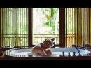 ЧТО МЫ СНИМАЛИ ДЛЯ Simple Beyond   Four Seasons Sayan Bali