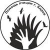 Помощь птицам, г. Киров