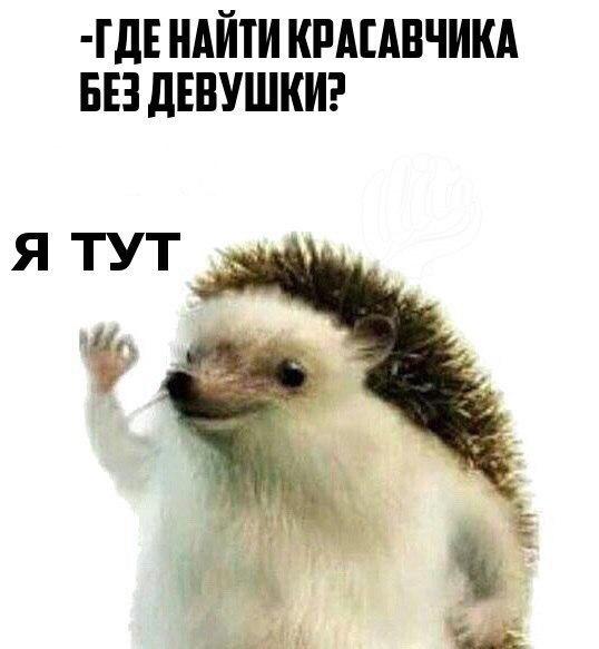 Фото №456274467 со страницы Андрея Дубовцева