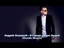 Андрей Леницкий - В Городе Диких Людей (Tatolix Remix)
