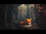 Рыжая лисица. Когда наступает ночь