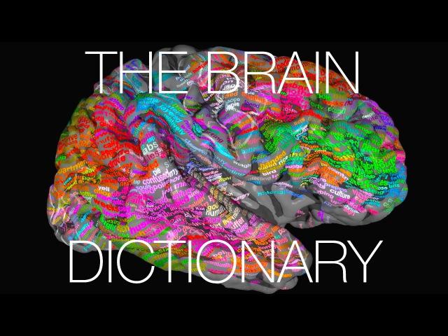 The brain dictionary
