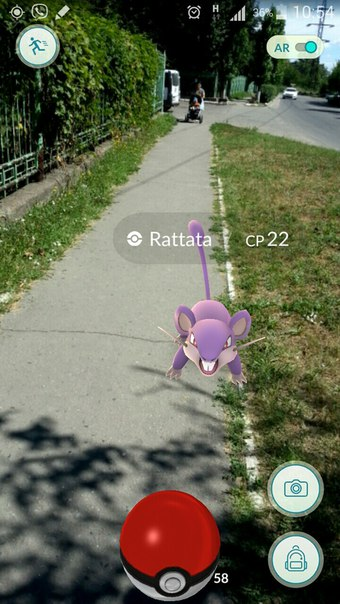 Крыса в Покепон гоу