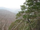 вид с отрога г.Жемси. над рекой Цусхвадже
