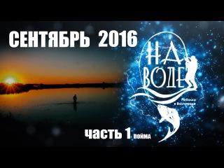 Рыбалка в Волгограде На Воде Сентябрь 1