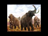 Земля мамонтов, Часть 2 (документальный фильм)