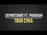 Скриптонит ft. Pharaoh - Твоя сука