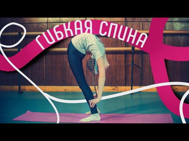 Гибкая спина Как развить гибкость спины Упражнения для гибкой спины Как сделать спину гибкой