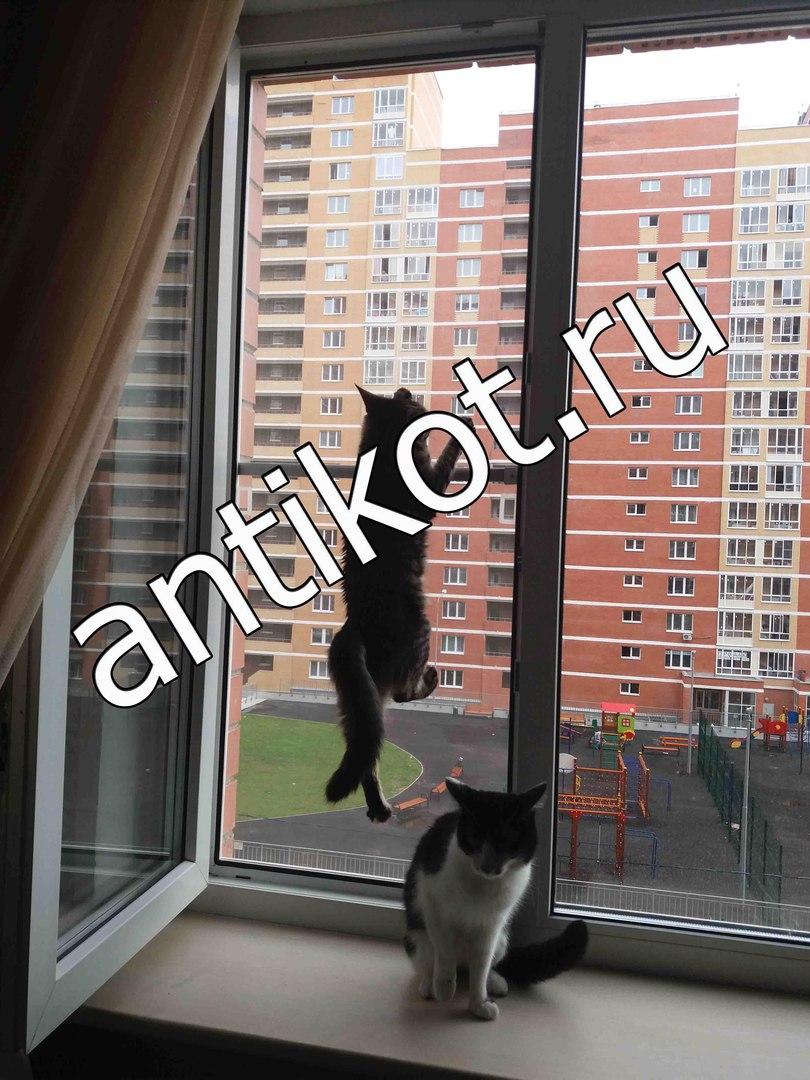 Сетка-антикошка на окна из нержавеющей стали