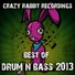 Dubversion - In Gods Good Time (DJ Purple Rabbit Drum and Bass remix)