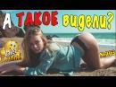 Очень смешные видео ПРИКОЛЫ - А Вы такое ВИДЕЛИ
