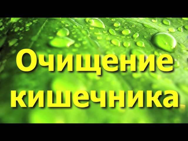 Очищение организма при помощи семени льна - профилактика и лечение многих заболеваний.