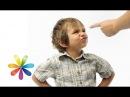Особенности воспитания по типу темперамента ребенка - Все буде добре - Выпуск 458 - 09.09.2014