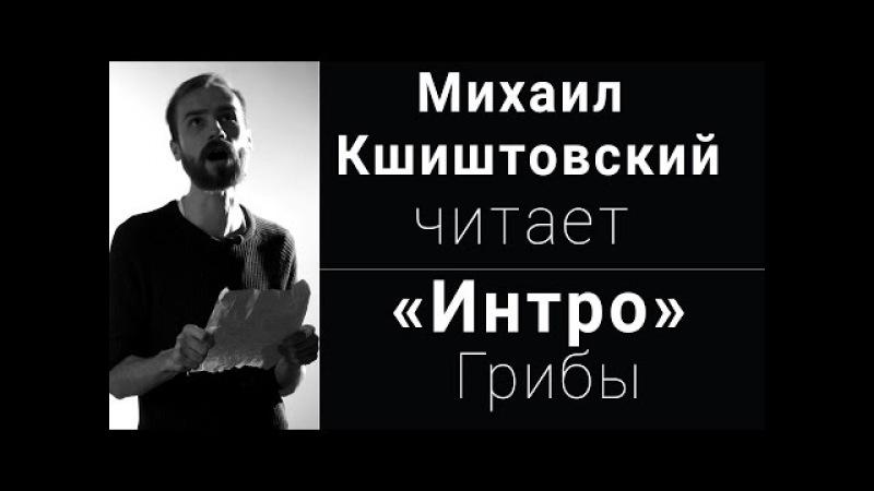 Михаил Кшиштовский читает Интро Грибы Вечера поэзии