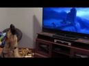 German shepherd howling with wolves from Zootopia ♥♥ - REAL Its Really Amusing