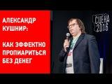 Александр Кушнир Как эффектно пропиариться без денег. Форум артистов