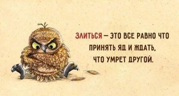 https://cs7060.vk.me/c636219/v636219286/43129/TPou1-eZFm4.jpg