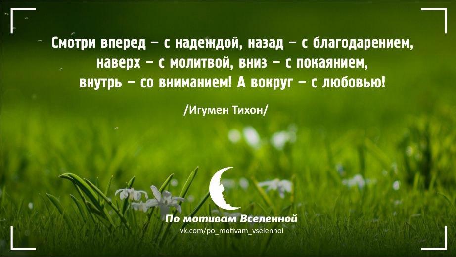 https://cs7060.vk.me/c636219/v636219286/43af1/1alrjQRKDO8.jpg