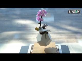 В Швеции создали парящие цветы